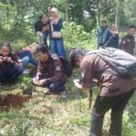 penanamanpohondesacilengkrang